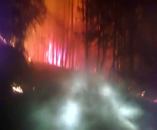 Охваченный пожаром поселок в Калифорнии (9.435 MB)