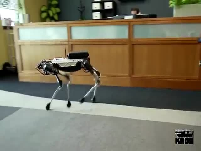 Нелегка жизнь четвероногого робота от Boston Dynamics