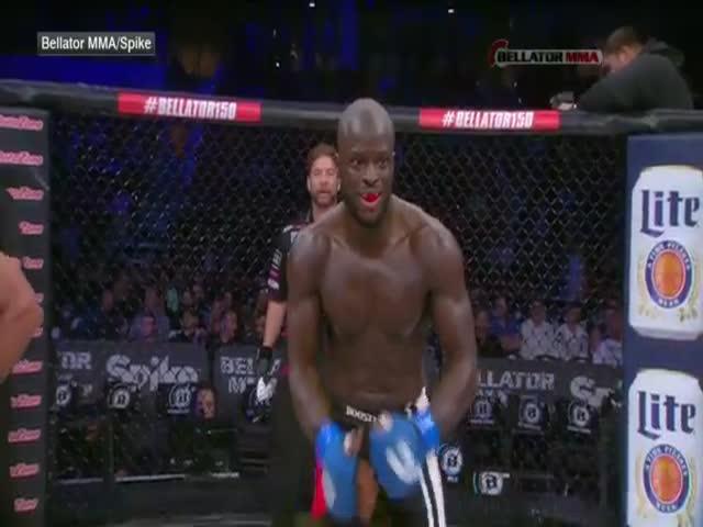 Боец MMA случайно ударил одного из судей (1.577 MB)