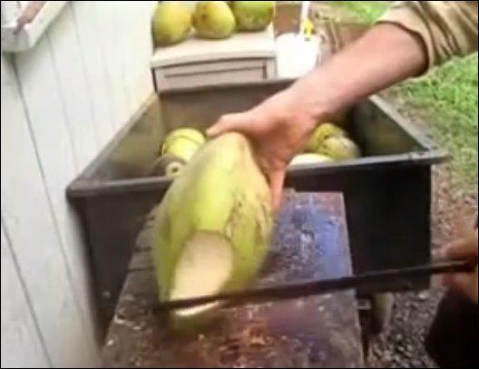 Как быстро вскрывают свежие кокосы (3.782 MB)