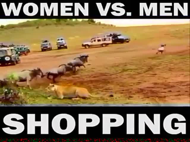 Как мужчина и женщина ходят за покупками