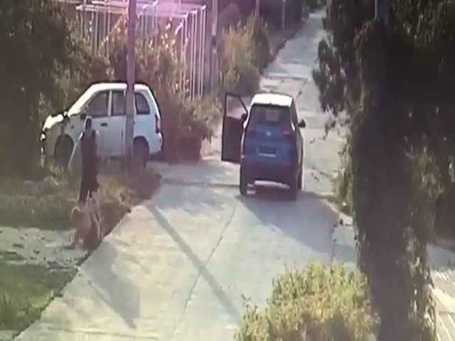 В Волгоградской области водитель напал на женщину и спокойно уехал
