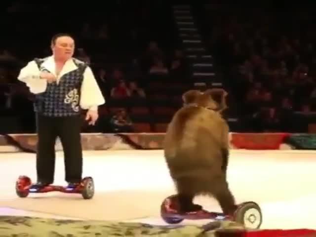 Цирковой