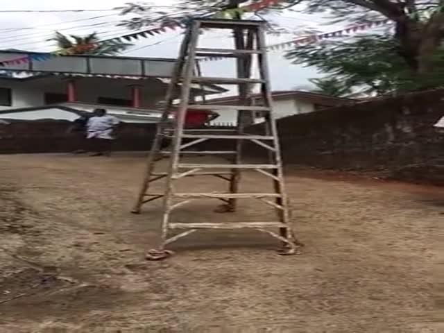 В Африке представили свою альтернативу шагающим роботам от Boston Dynamics