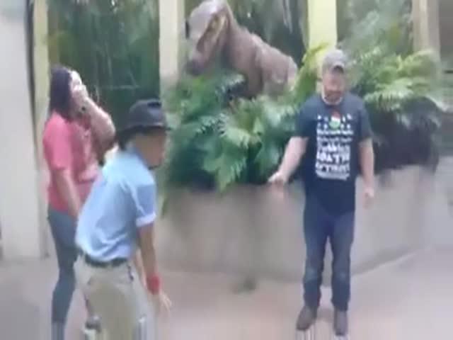 Не бойся динозавра, он же не настоящий