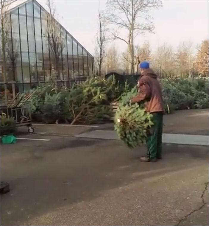 Когда стало скучно при упаковке новогодних елок