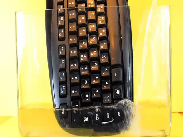 Что случится, если клавиатуру залить ацетоном