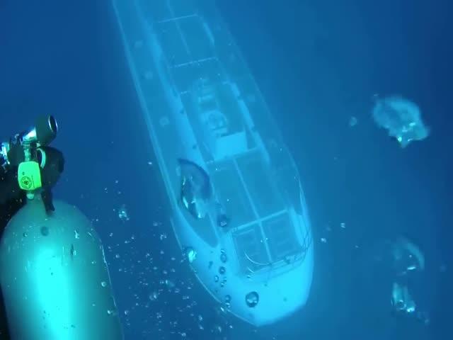 На Гавайских островах дайверы неожиданно встретили подводную лодку