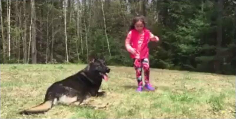 Тренировка собаки для защиты ребенка