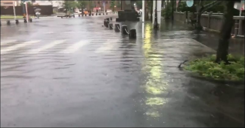 Крупная рыба плавает посреди города во время наводнения