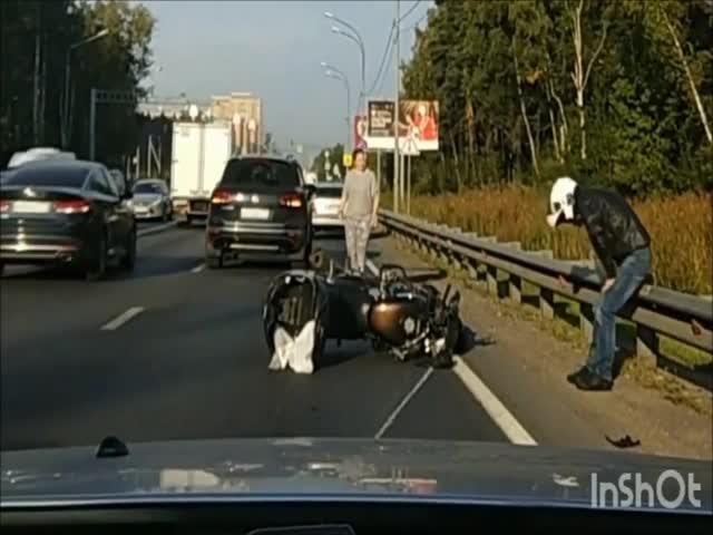 Лось перебегал дорогу и сбил мотоциклиста