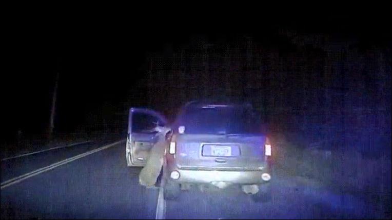 Олень очень сильно хотел прокатиться вместе с водителем внедорожника