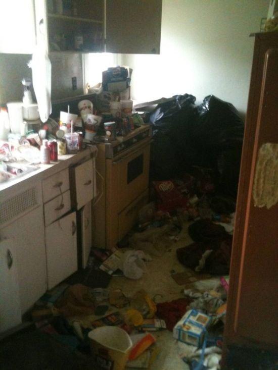 Чистота и порядок (10 фото)