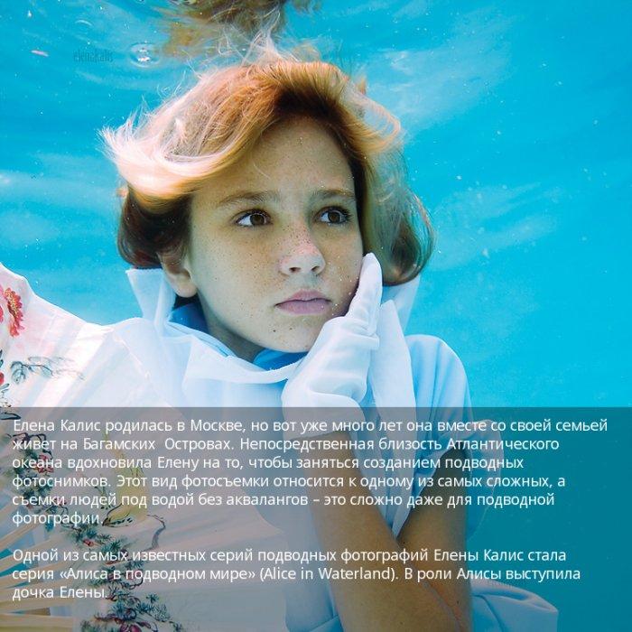 Алиса в подводном мире (23 фото)