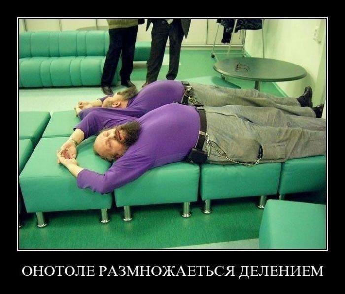 Демотиваторы на понедельник (30 фото)