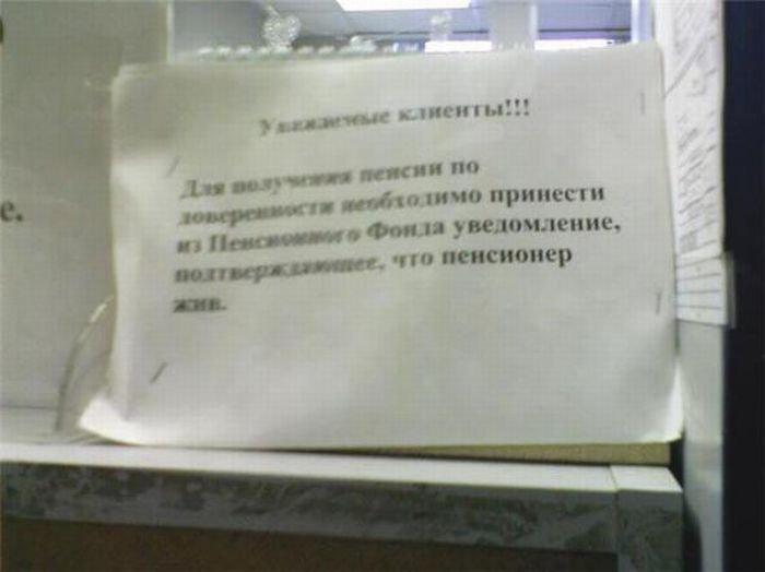Загонные объявления и надписи (58 фото)