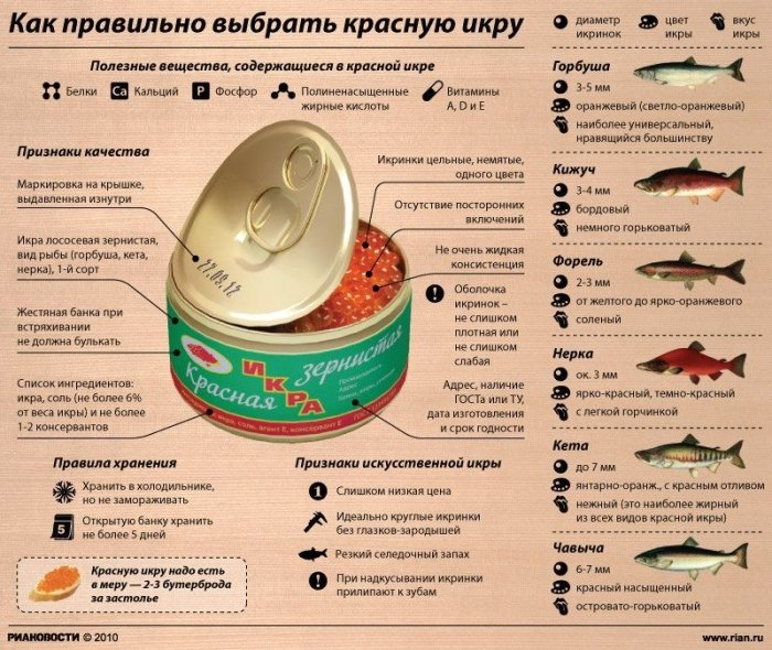 Инфографики к Новому Году (18 фото)