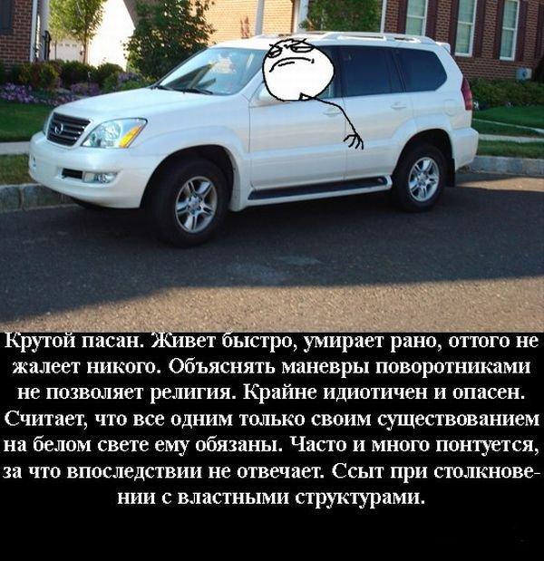 Виды водителей в дородных пробках (7 фото)