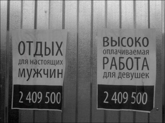 Загонные объявления и надписи (21 фото)