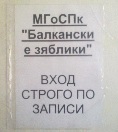 Загонные объявления и надписи (39 фото)