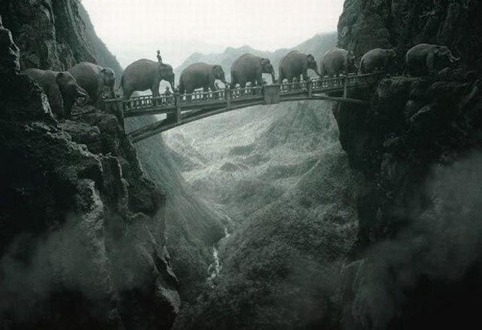 Удивительные фотографии от Томаса Хербрича (42 фото)