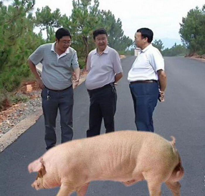 Фотожаба по-китайски (44 фото)