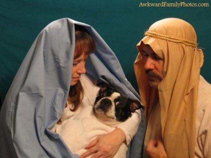 Странные семейные снимки (51 фото)