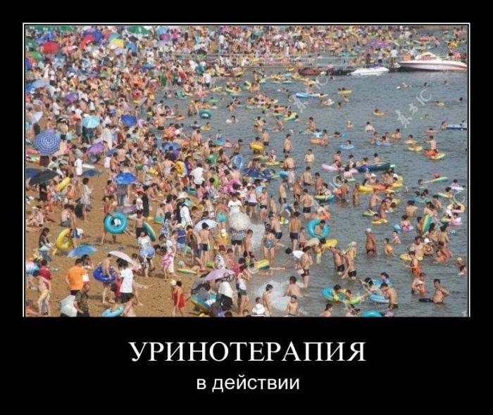 Демотиваторы на среду (24 фото)