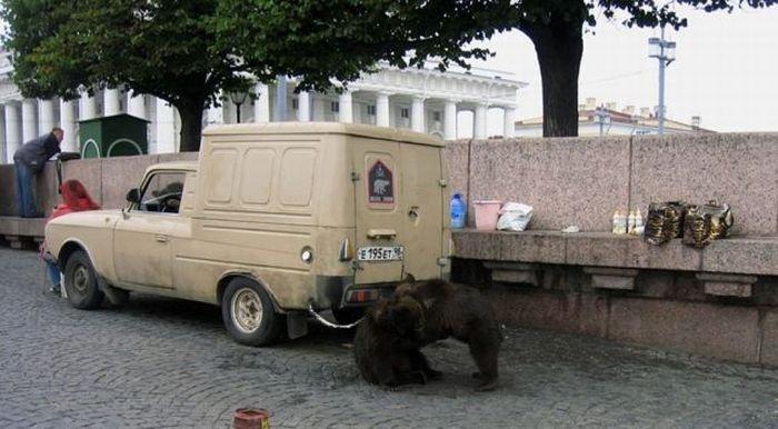 Российские приколы (38 фото)