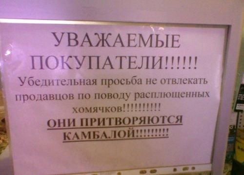 Загонные объявления и надписи (28 фото)