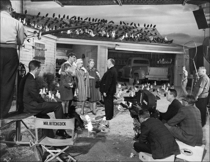 Съемки известных голливудских фильмов (59 фото)