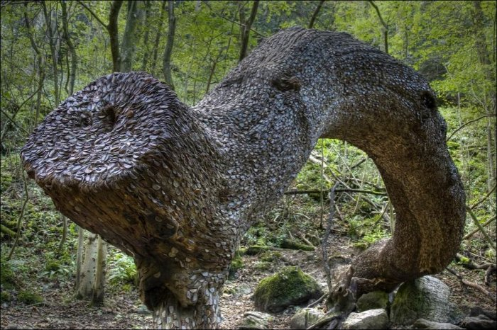 Денежные деревья в Великобритании (12 фото)