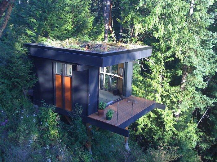 Офис в лесу (5 фото)