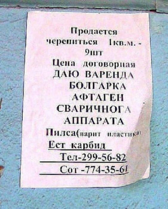 Загонные объявления и надписи (52 фото)