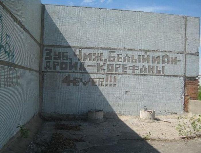 Загонные объявления и надписи (27 фото)