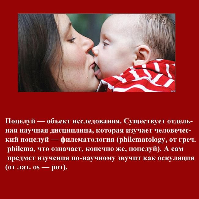 Интересное о поцелуях (20 фото)