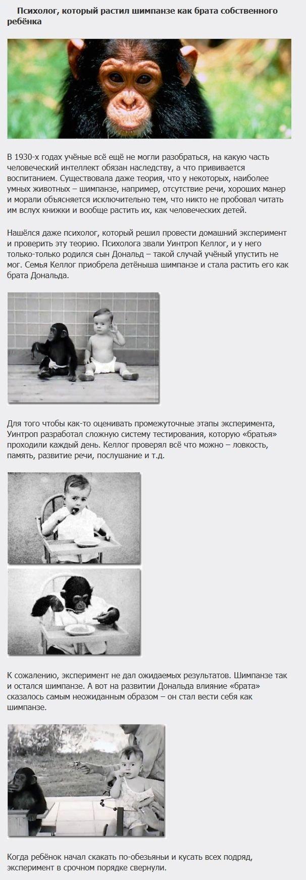 Самые странные эксперименты на детях (5 фото)