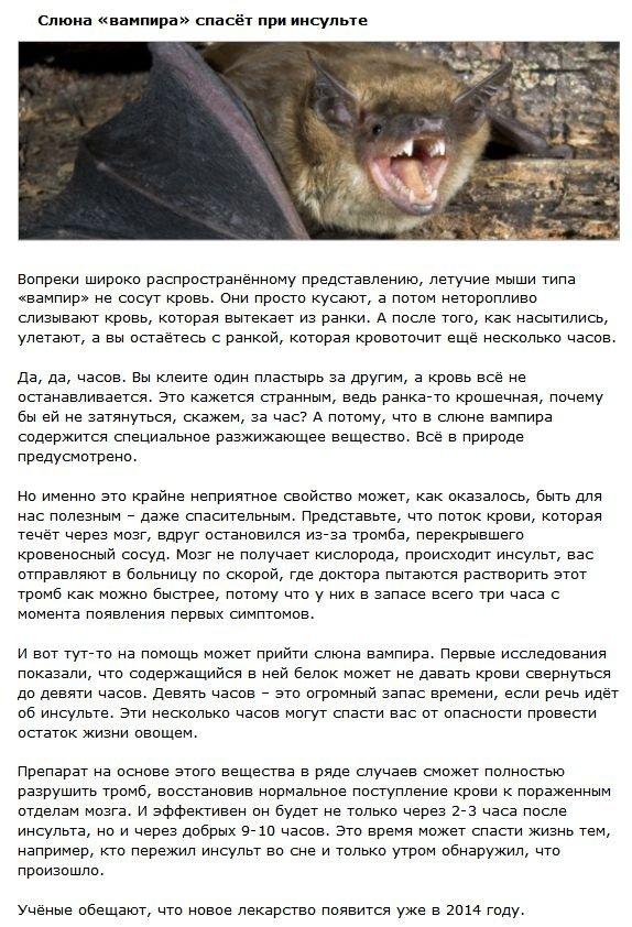 Животные, которые помогут победить болезни (4 фото)