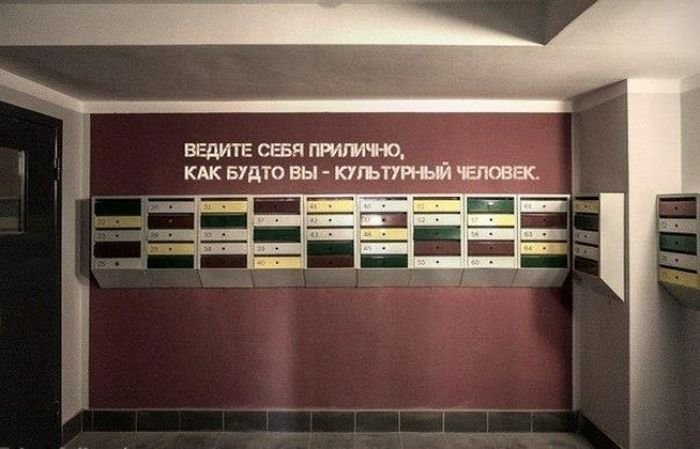 Загонные объявления и надписи (51 фото)