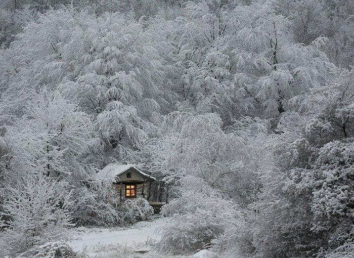 Зима (20 фото)