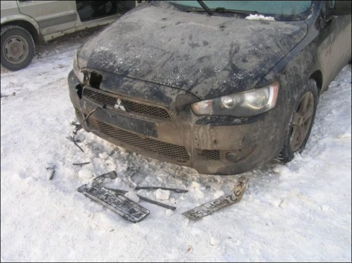 Собаки погрызли автомобиль (9 фото)