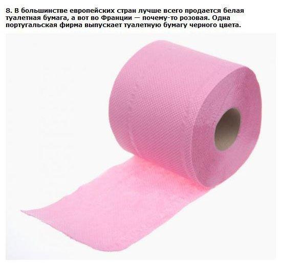 Факты о туалетной бумаге (10 фото)