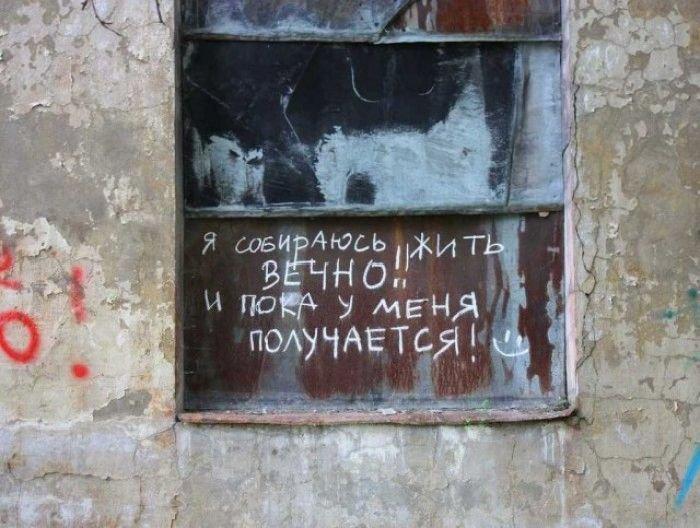 Загонные объявления и надписи (53 фото)