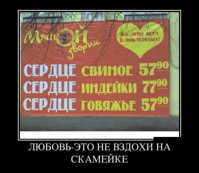 Демотиваторы на среду (35 фото)