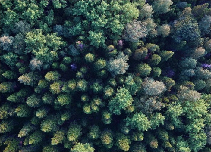 Красоты мира (59 фото)