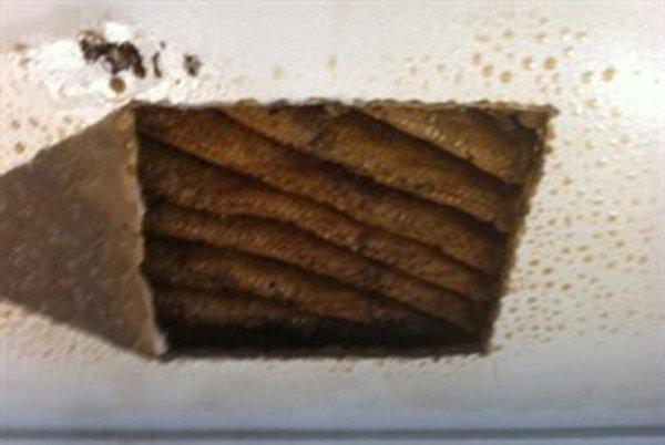 Сюрприз в потолке (3 фото)
