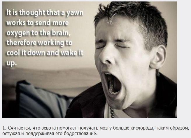 Факты о мозге (18 фото)