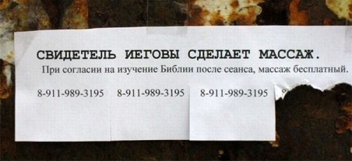 Загонные объявления и надписи (33 фото)