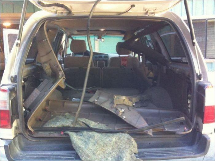 Медведь взломал автомобиль (7 фото)