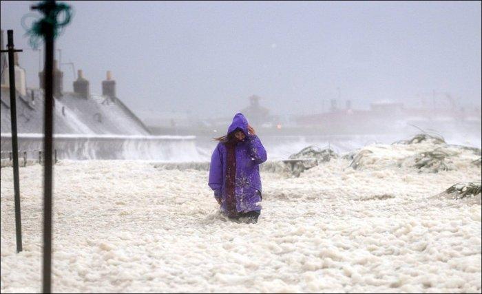 Шотландию накрыто морской пеной (7 фото)